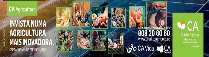 Caixa Credito Agricola 1